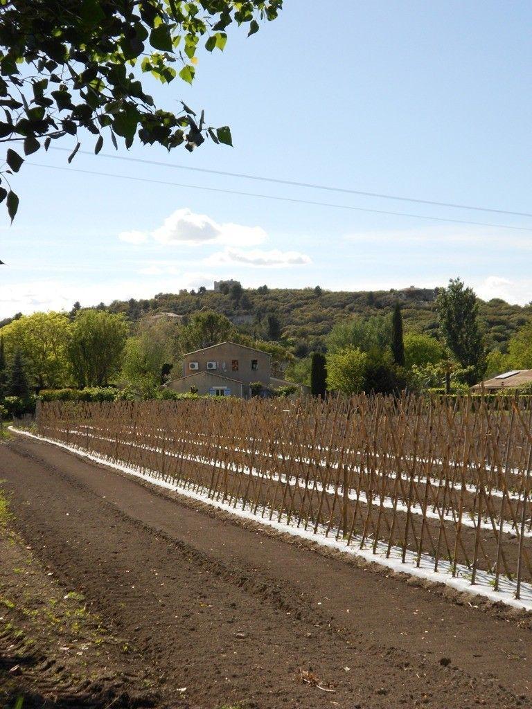 paysage rural 2 hameau thouzon