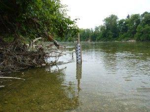 niveau eau