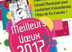 invitation-ceremonie-des-voeux-2017