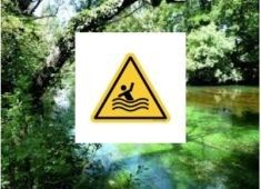sorgue danger smbs